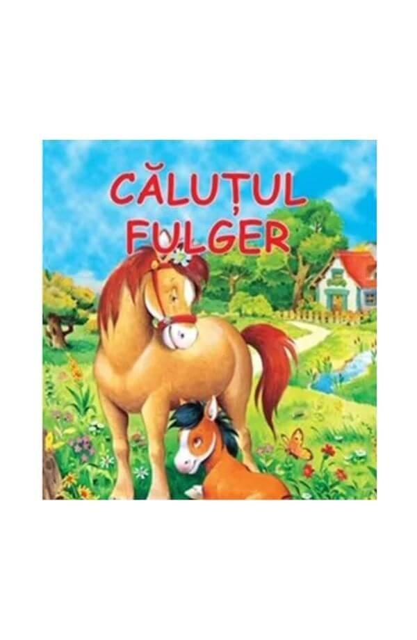 Calutul Fulger - cartonata